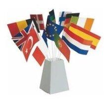Pack de 50 banderines diferentes países