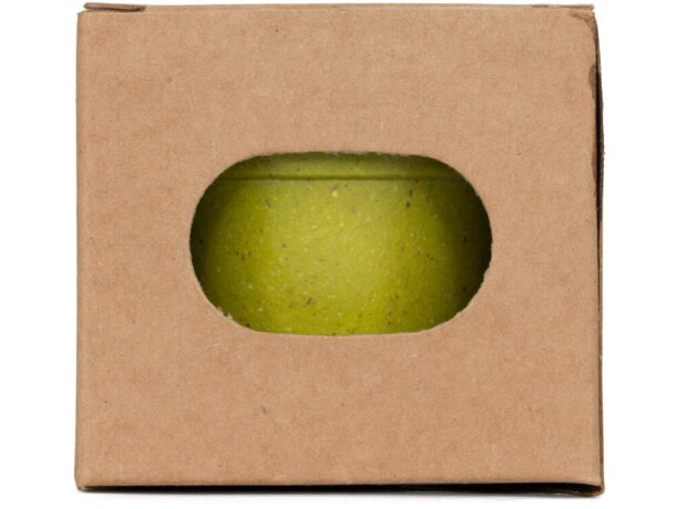 Maceta de cartón ecológico con semillas de petunia para empresas