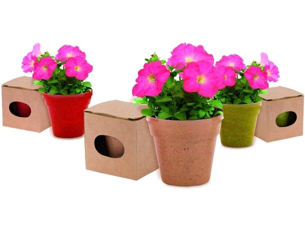 Maceta de cartón reciclado con semillas de petunia personalizada
