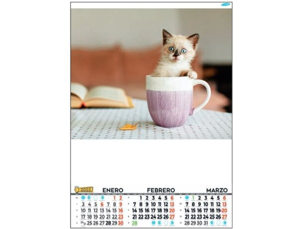 Calendario De Pared Con Faldilla Bimensual Lámina Estandar mediano